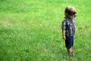 Critical thinking activities for preschoolers | The Apple Tree Learning Centers in Tucson